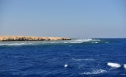 red-sea-blue