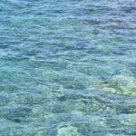 Korallenriff im Roten Meer Aegypten