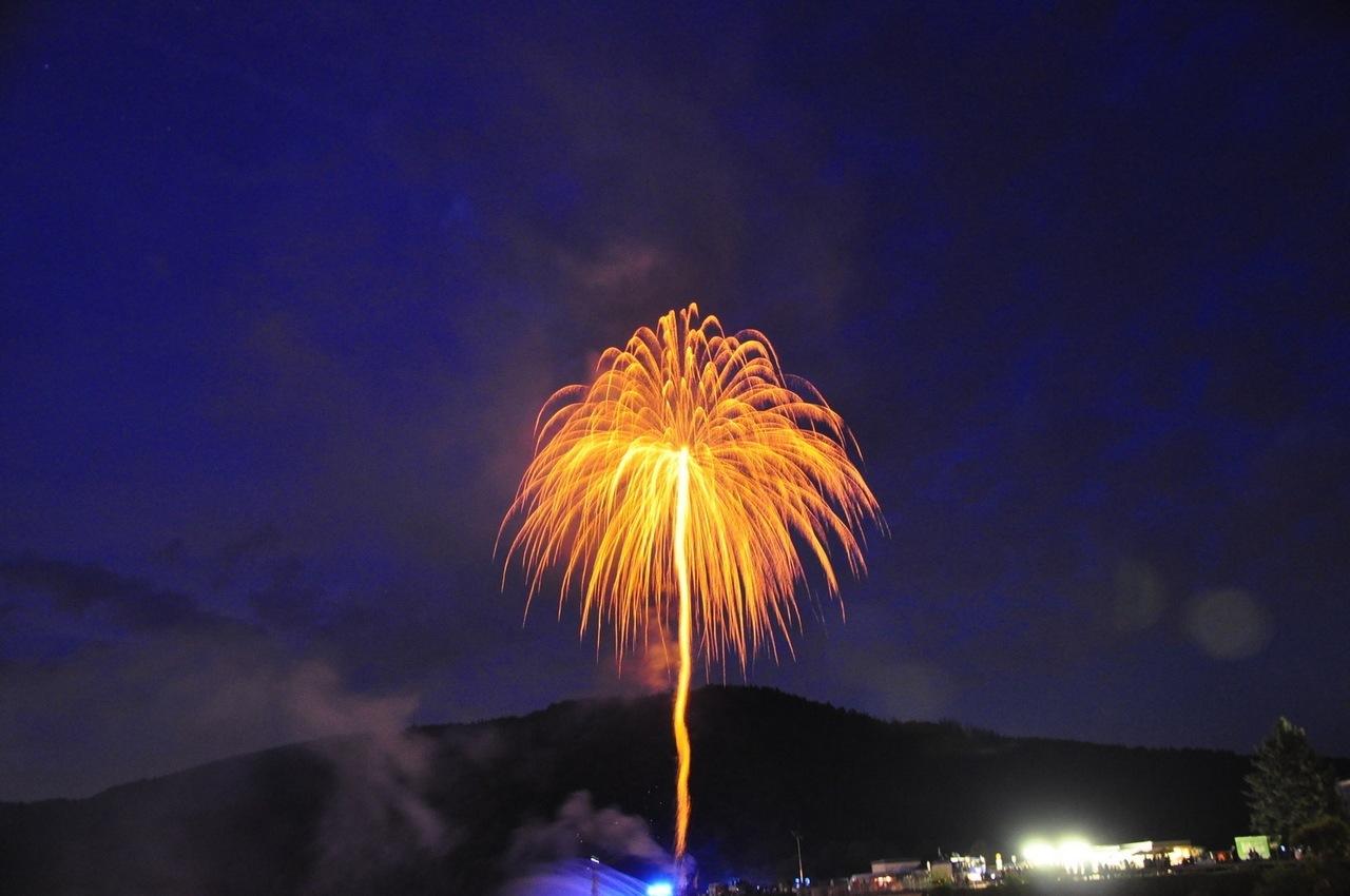 Feuerwerks-Palme